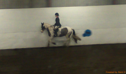 Canter 1